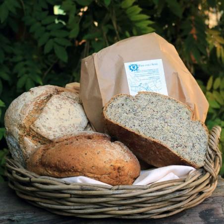Pane con i Semi