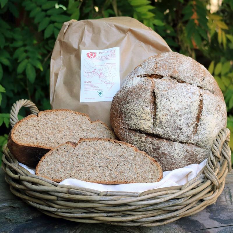 Pane integrale degli 11 grani antichi